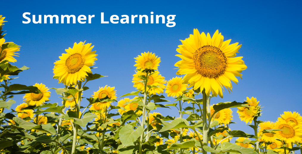 APS Summer Learning Opportunities
